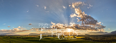 PROFOCUS-383.jpg