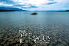 PROFOCUS-387.jpg