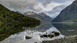 PROFOCUS-297.jpg