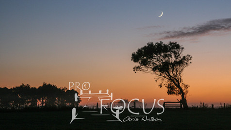 PROFOCUS-11.jpg