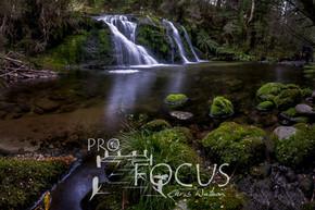 PROFOCUS-294.jpg