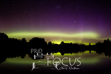 PROFOCUS-317.jpg