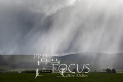 PROFOCUS-473.jpg