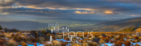 PROFOCUS-82.jpg