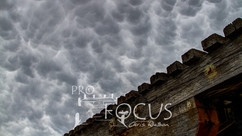 PROFOCUS-53.jpg