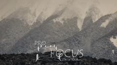 PROFOCUS-357.jpg