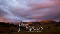 PROFOCUS-251.jpg