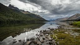 PROFOCUS-381.jpg