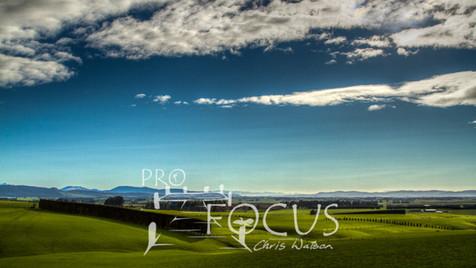 PROFOCUS-83.jpg