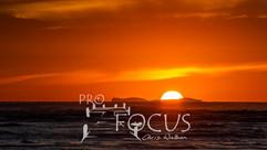 PROFOCUS-56.jpg