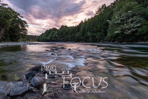 PROFOCUS-495.jpg