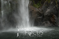 PROFOCUS-243.jpg