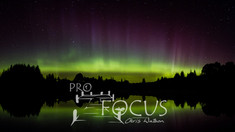 PROFOCUS-318.jpg