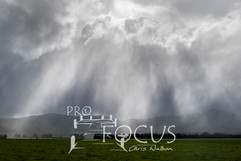 PROFOCUS-474.jpg
