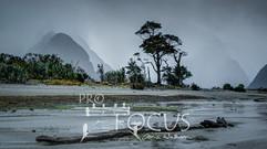 PROFOCUS-180.jpg
