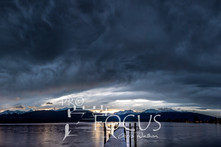 PROFOCUS-323.jpg