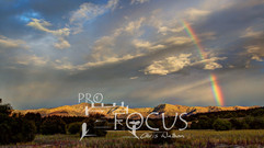PROFOCUS-12.jpg