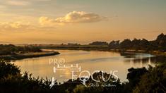 PROFOCUS-14.jpg