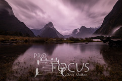 PROFOCUS-516.jpg