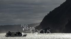 PROFOCUS-343.jpg