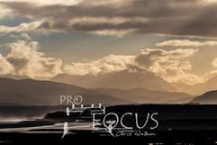PROFOCUS-312.jpg