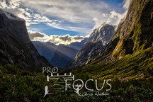 PROFOCUS-300.jpg