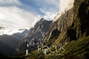 PROFOCUS-299.jpg