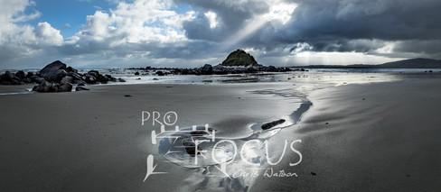 PROFOCUS-176.jpg