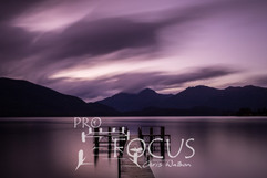 PROFOCUS-427.jpg