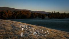 PROFOCUS-8.jpg