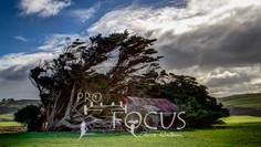 PROFOCUS-78.jpg