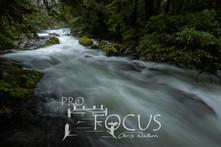 PROFOCUS-514.jpg