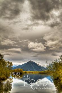 PROFOCUS-57.jpg