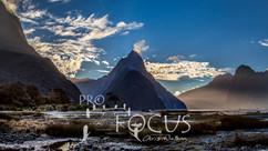 PROFOCUS-302.jpg