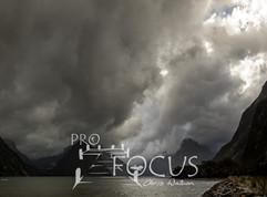 PROFOCUS-350.jpg