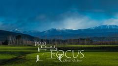 PROFOCUS-174.jpg
