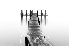 PROFOCUS-429.jpg