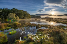 PROFOCUS-486.jpg