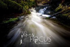 PROFOCUS-521.jpg