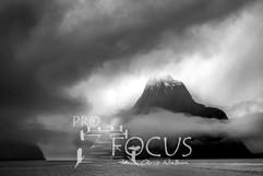 PROFOCUS-452.jpg