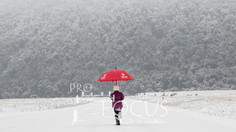 PROFOCUS-358.jpg