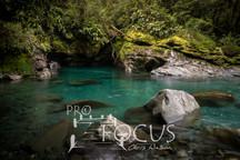 PROFOCUS-239.jpg