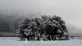 PROFOCUS-361.jpg