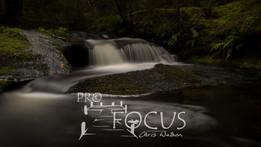 PROFOCUS-430.jpg
