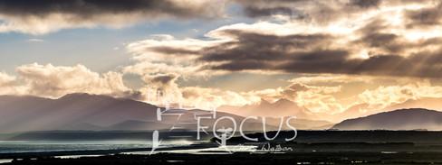 PROFOCUS-310.jpg