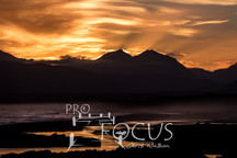 PROFOCUS-316.jpg
