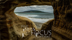 PROFOCUS-213.jpg