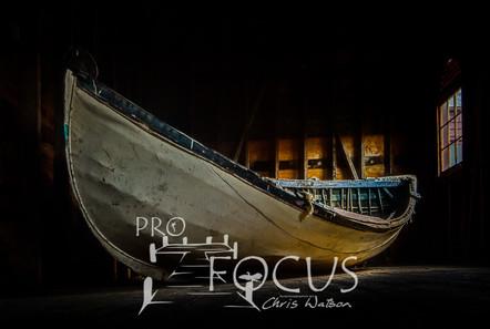 PROFOCUS-130.jpg