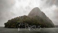 PROFOCUS-577.jpg