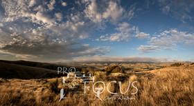 PROFOCUS-393.jpg